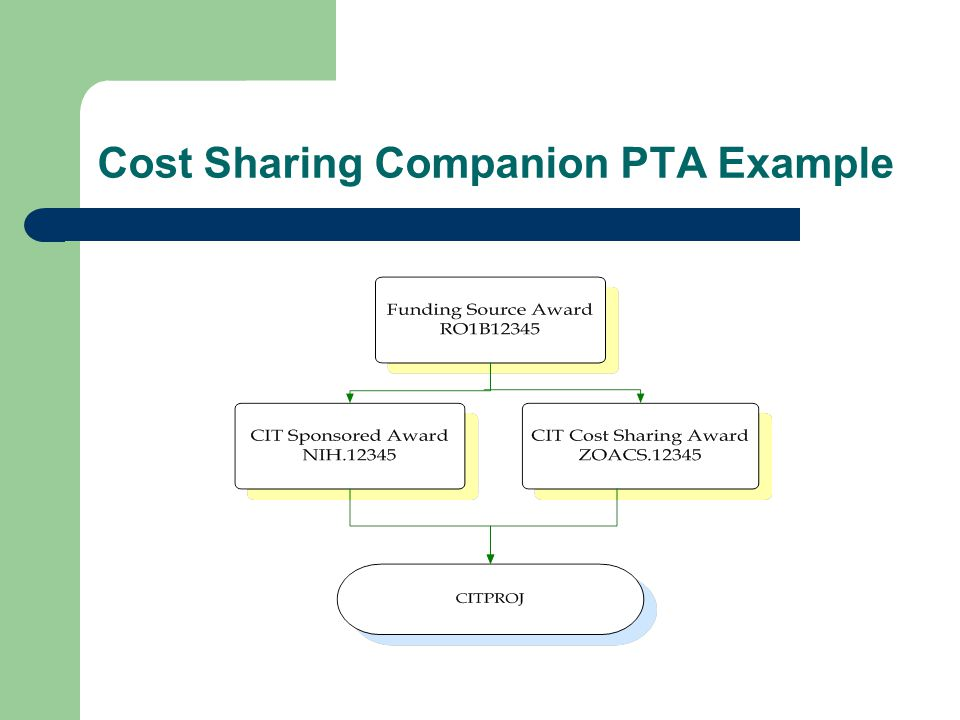 Cost Sharing Companion PTA Example