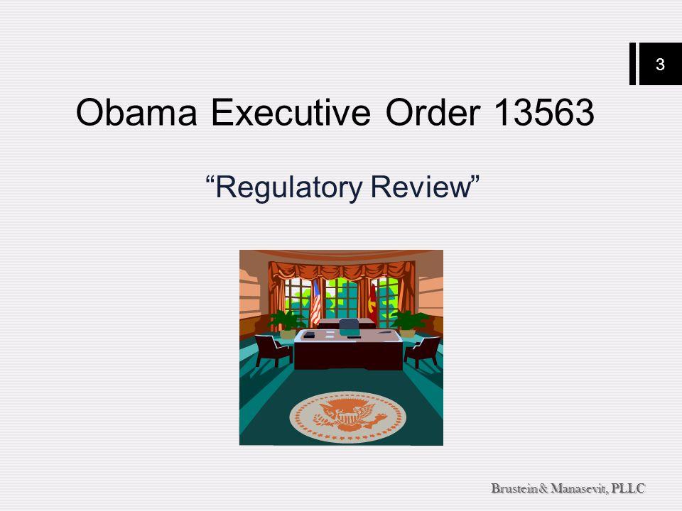 3 Brustein & Manasevit, PLLC Obama Executive Order 13563 Regulatory Review