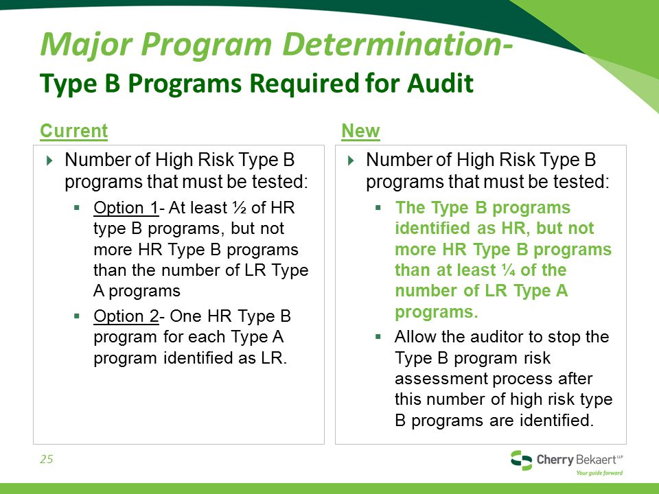 Major Program Determination- Type B Programs Required for Audit Current  Number of High Risk Type B programs that must be tested:  Option 1- At least ½ of HR type B programs, but not more HR Type B programs than the number of LR Type A programs  Option 2- One HR Type B program for each Type A program identified as LR.