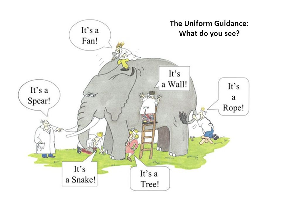 THE UNIFORM GUIDANCE: A Top Ten List 2 The Uniform Guidance: What do you see?