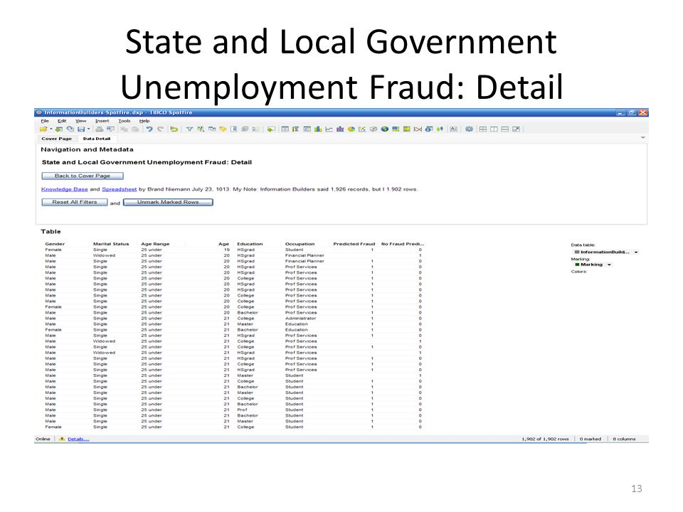 State and Local Government Unemployment Fraud: Detail 13