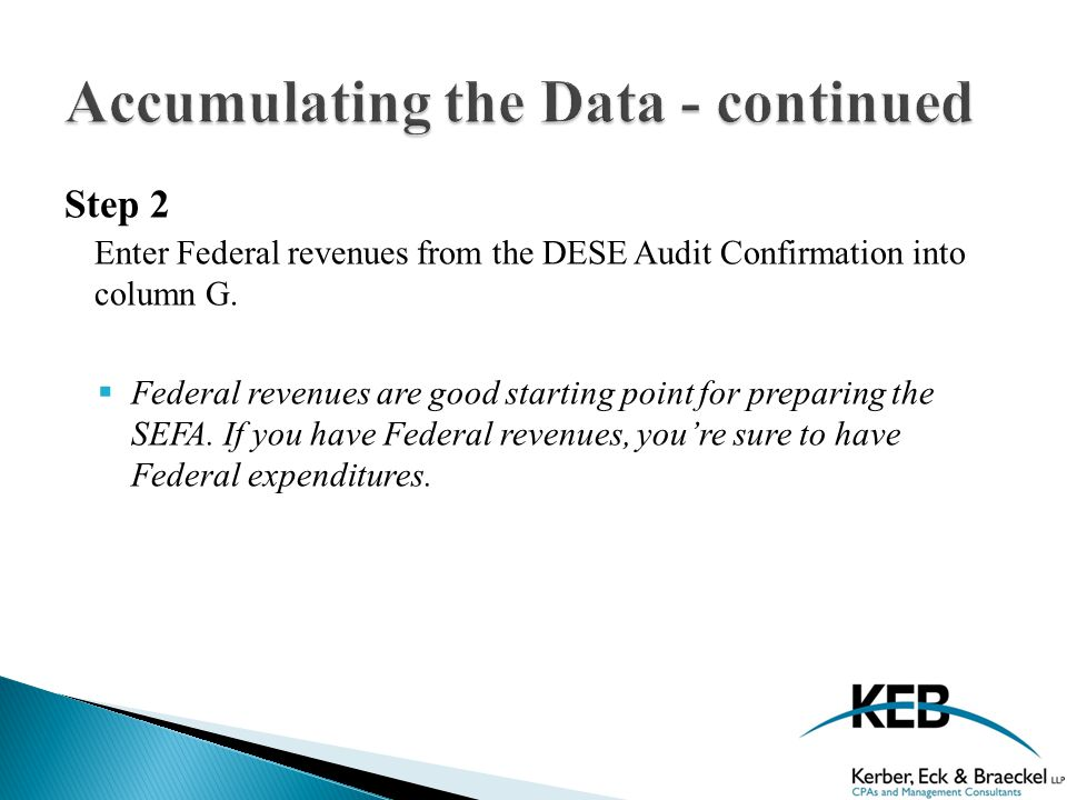 Step 2 Enter Federal revenues from the DESE Audit Confirmation into column G.