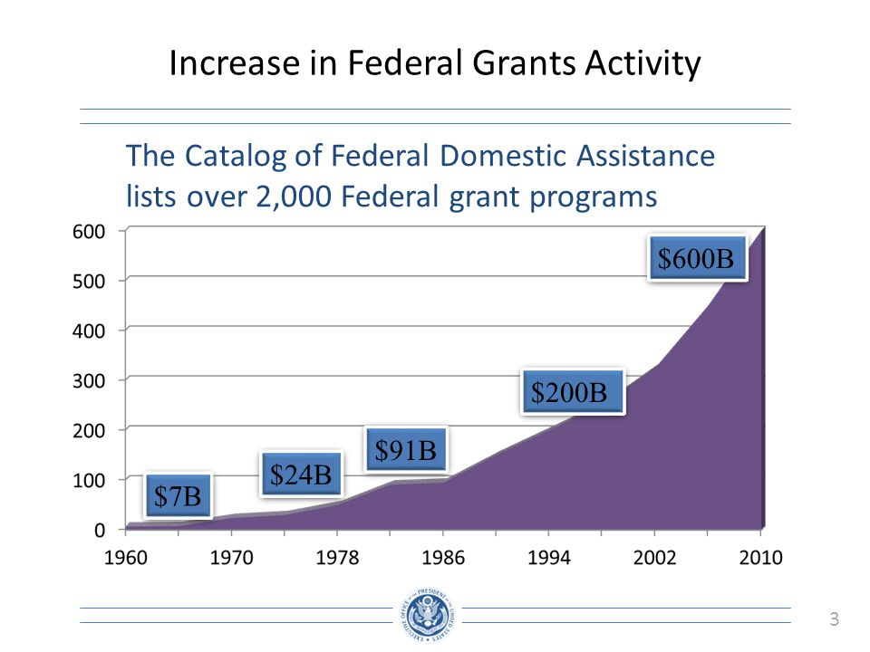 3 Increase in Federal Grants Activity $7B $24B $91B $200B $600B The Catalog of Federal Domestic Assistance lists over 2,000 Federal grant programs