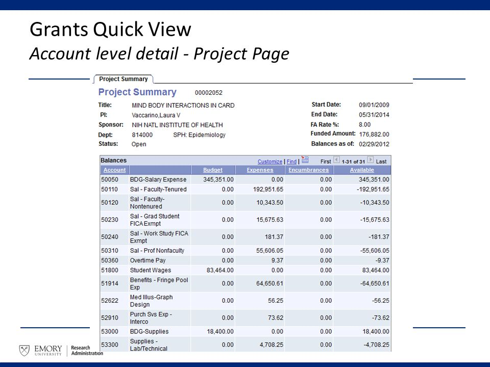 Grants Quick View Account level detail - Project Page