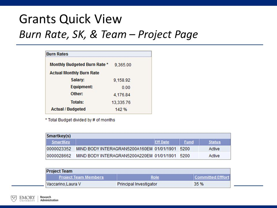 Grants Quick View Burn Rate, SK, & Team – Project Page