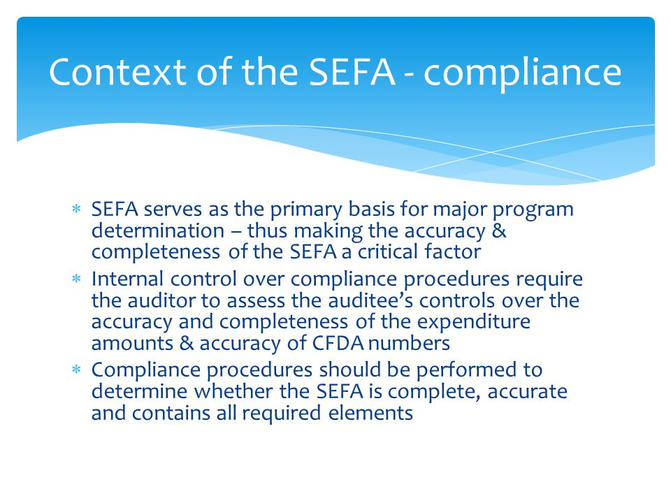 SEFA serves as the primary basis for major program determination – thus making the accuracy & completeness of the SEFA a critical factor  Internal control over compliance procedures require the auditor to assess the auditee's controls over the accuracy and completeness of the expenditure amounts & accuracy of CFDA numbers  Compliance procedures should be performed to determine whether the SEFA is complete, accurate and contains all required elements Context of the SEFA - compliance