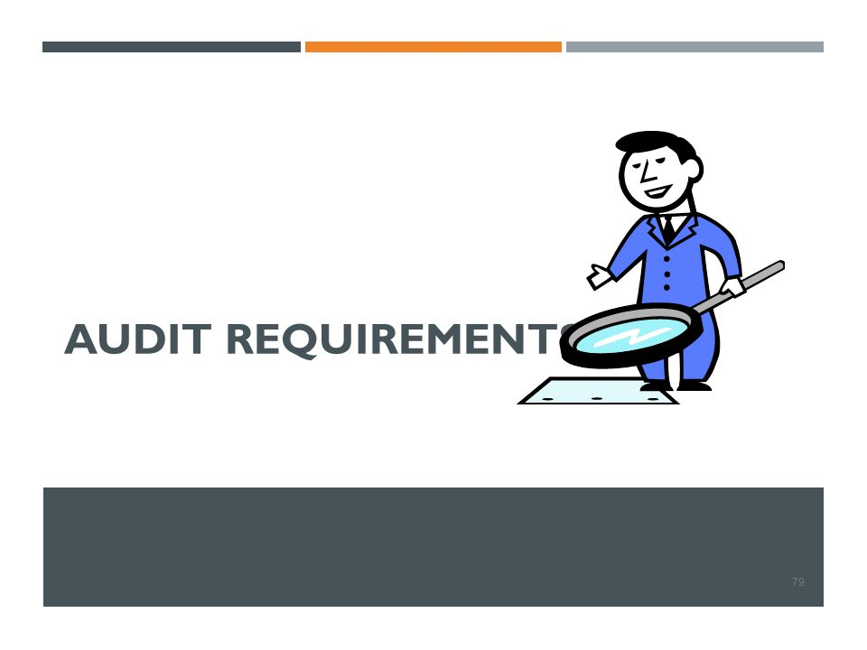 AUDIT REQUIREMENTS 79