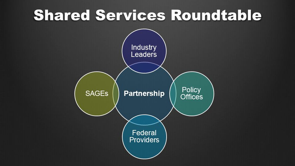 Partnership Industry Leaders Policy Offices Federal Providers SAGEs Shared Services Roundtable