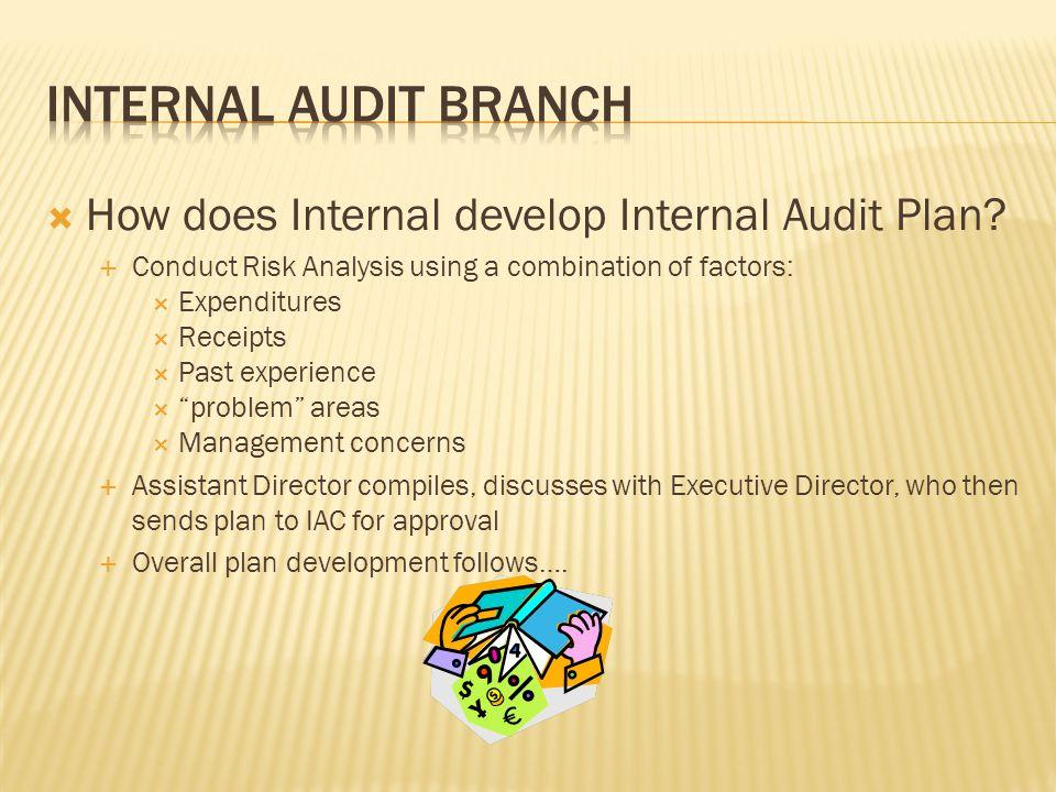  How does Internal develop Internal Audit Plan.