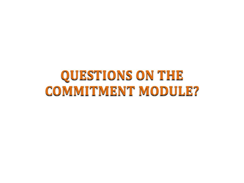 QUESTIONS ON THE COMMITMENT MODULE