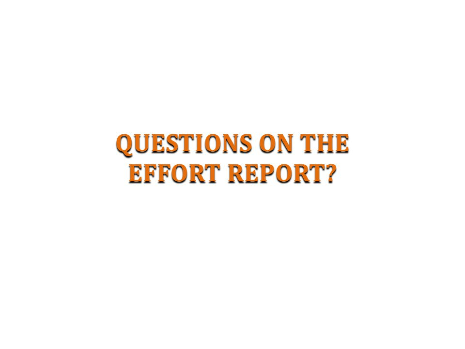 QUESTIONS ON THE EFFORT REPORT