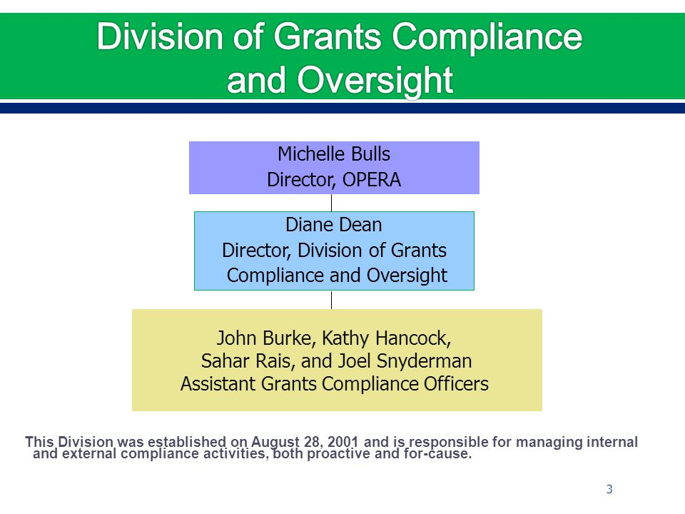 This Division was established on August 28, 2001 and is responsible for managing internal and external compliance activities, both proactive and for-cause.