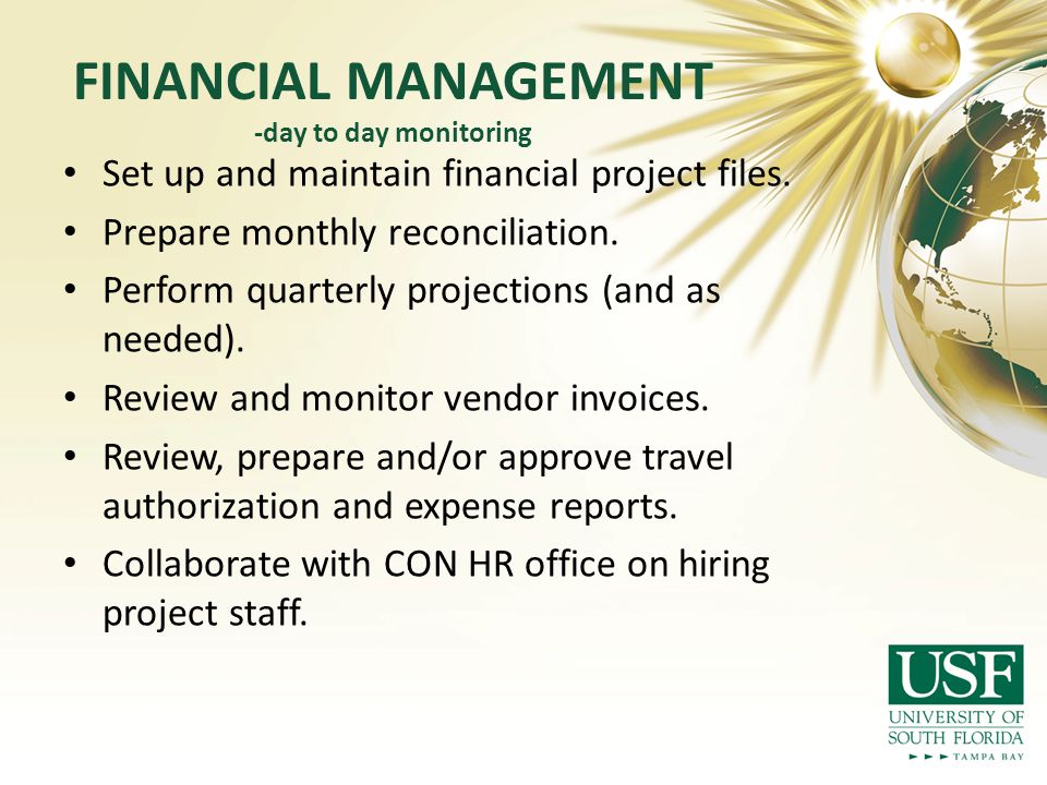 FINANCIAL MANAGEMENT -day to day monitoring Set up and maintain financial project files.