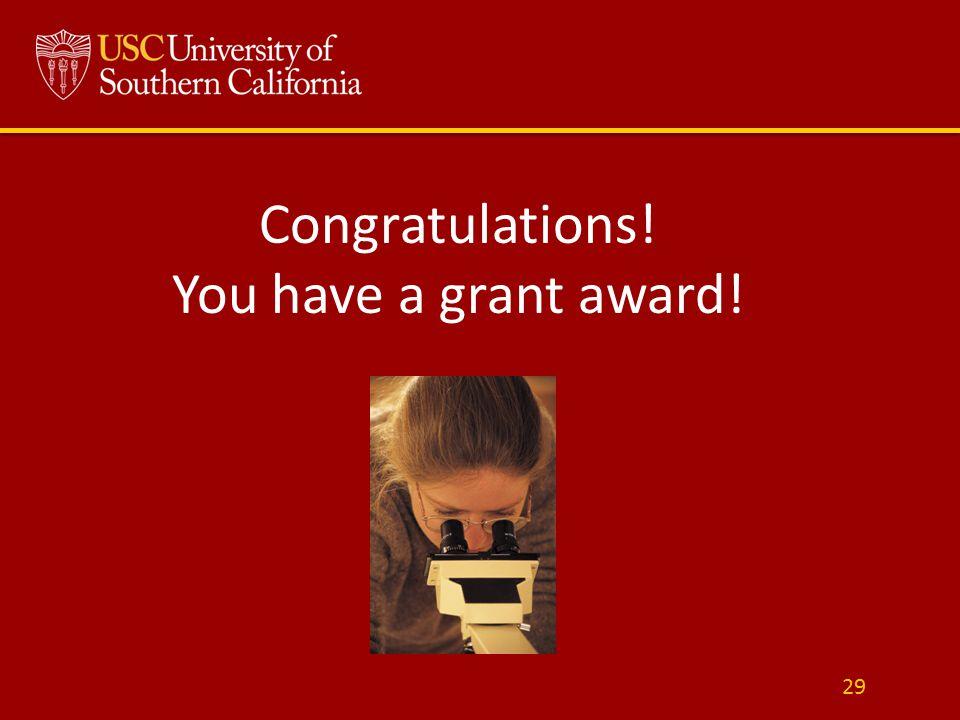 Congratulations! You have a grant award! 29