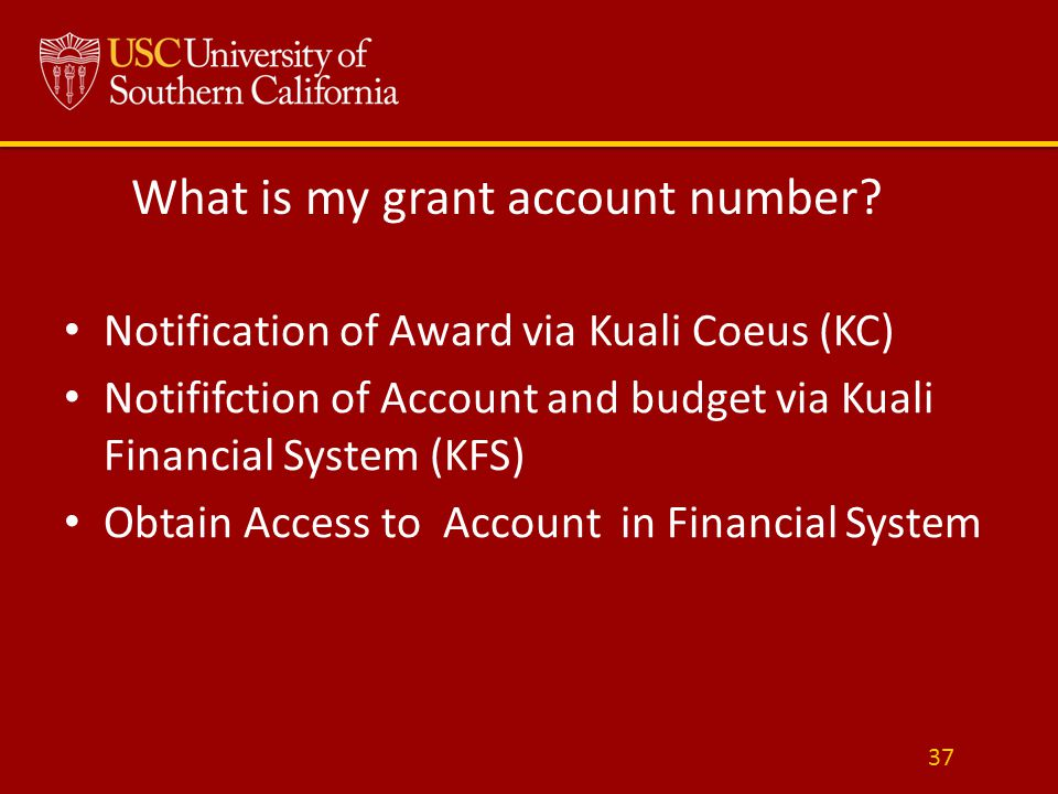 What is my grant account number.