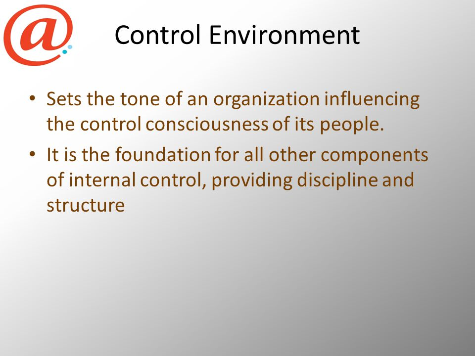 Control Environment Sets the tone of an organization influencing the control consciousness of its people.