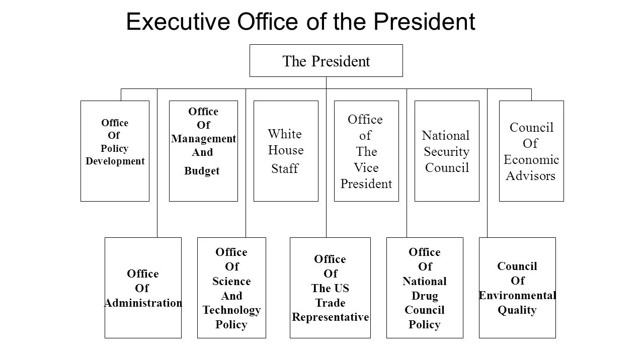 The President Office Of Policy Development Office Of Management And Budget Council Of Economic Advisors National Security Council Office of The Vice P