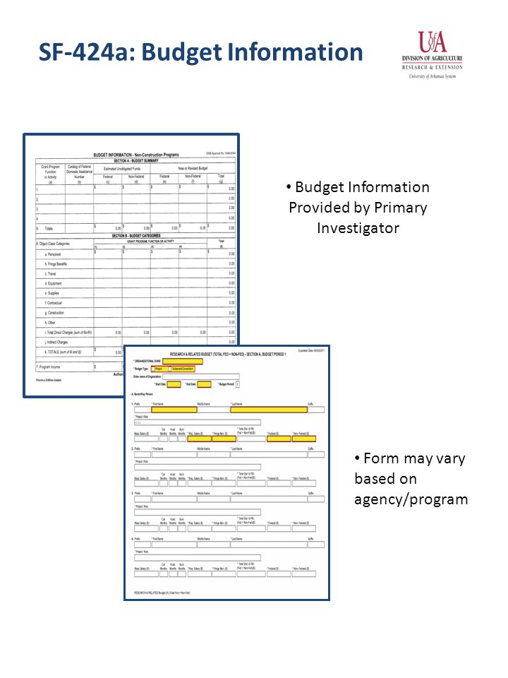 SF-424a: Budget Information Budget Information Provided by Primary Investigator Form may vary based on agency/program