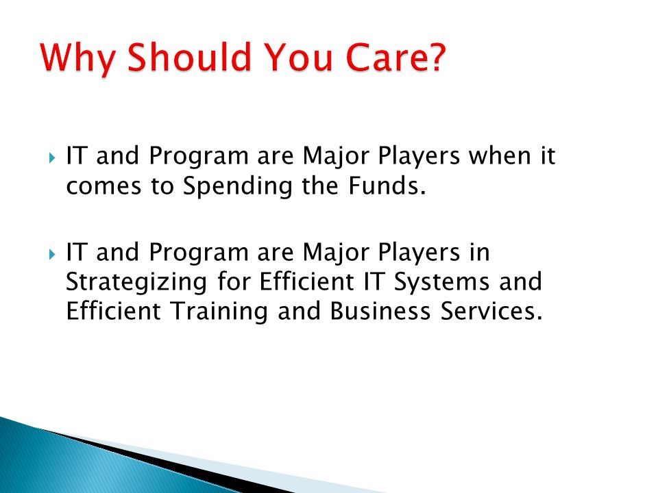  IT and Program are Major Players when it comes to Spending the Funds.