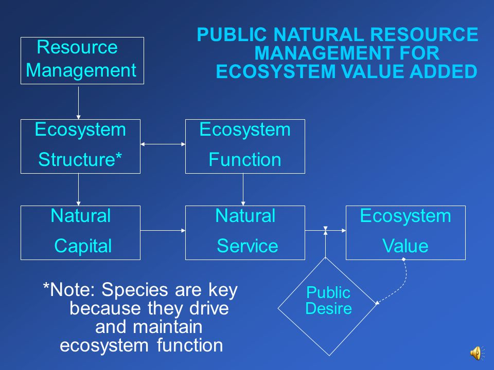 Natural Capital Ecosystem Value Natural Service Ecosystem Function Ecosystem Structure* Resource Management Public Desire PUBLIC NATURAL RESOURCE MANAGEMENT FOR ECOSYSTEM VALUE ADDED *Note: Species are key because they drive and maintain ecosystem function