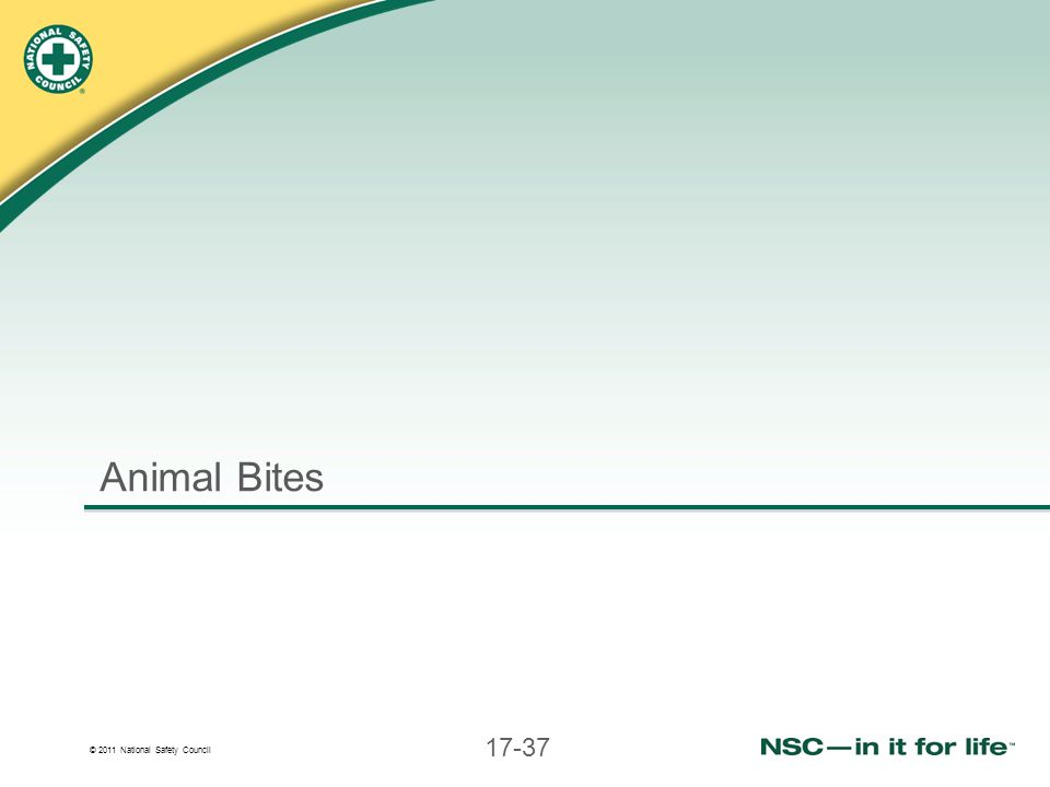 © 2011 National Safety Council 17-37 Animal Bites