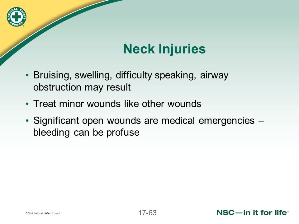 © 2011 National Safety Council 17-63 Neck Injuries Bruising, swelling, difficulty speaking, airway obstruction may result Treat minor wounds like othe