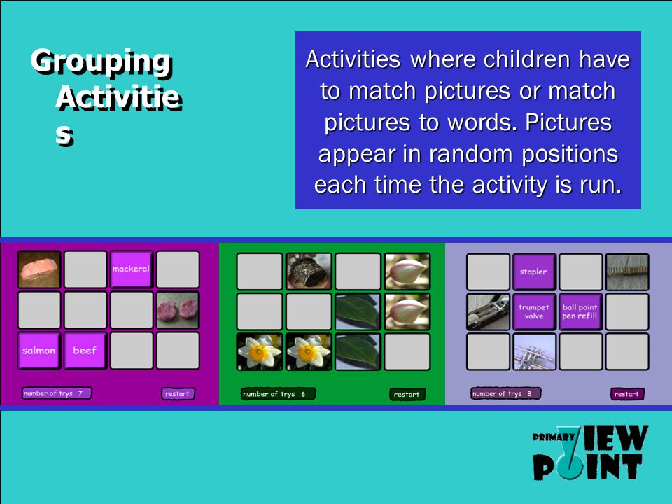 Sorting Activitie s Activities where children have to sort pictures into various categories.