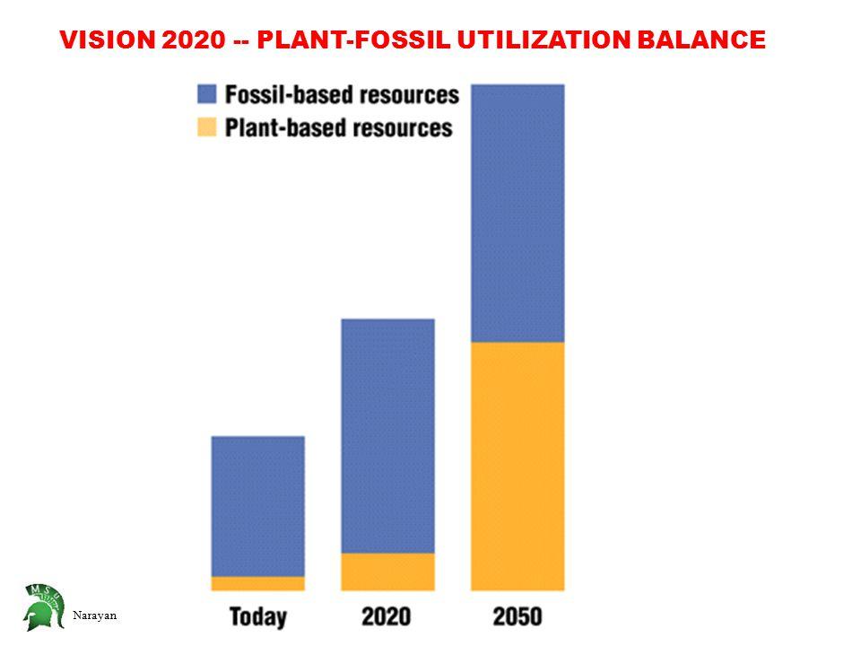 Narayan VISION 2020 -- PLANT-FOSSIL UTILIZATION BALANCE