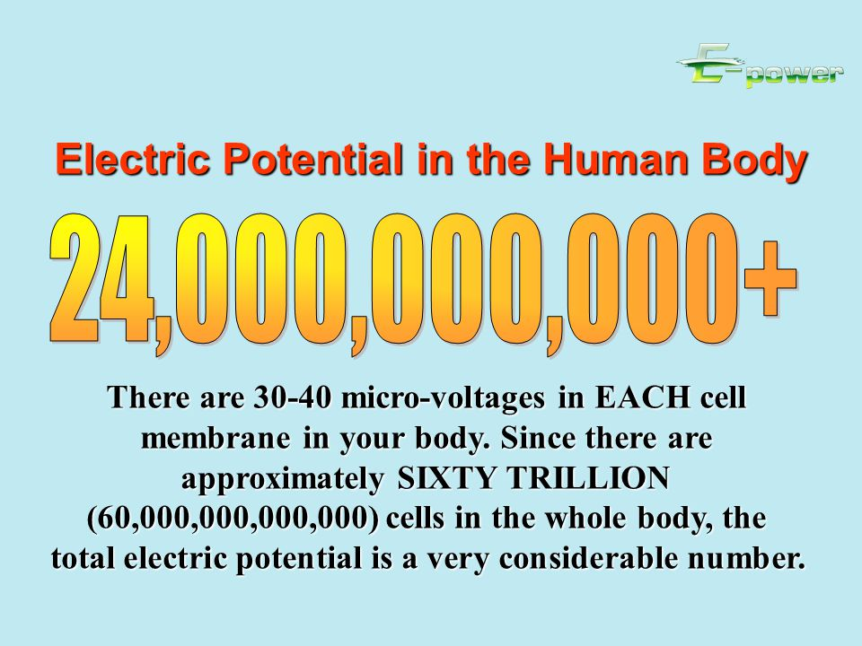 Electric Potential in the Human Body There are 30-40 micro-voltages in EACH cell membrane in your body.