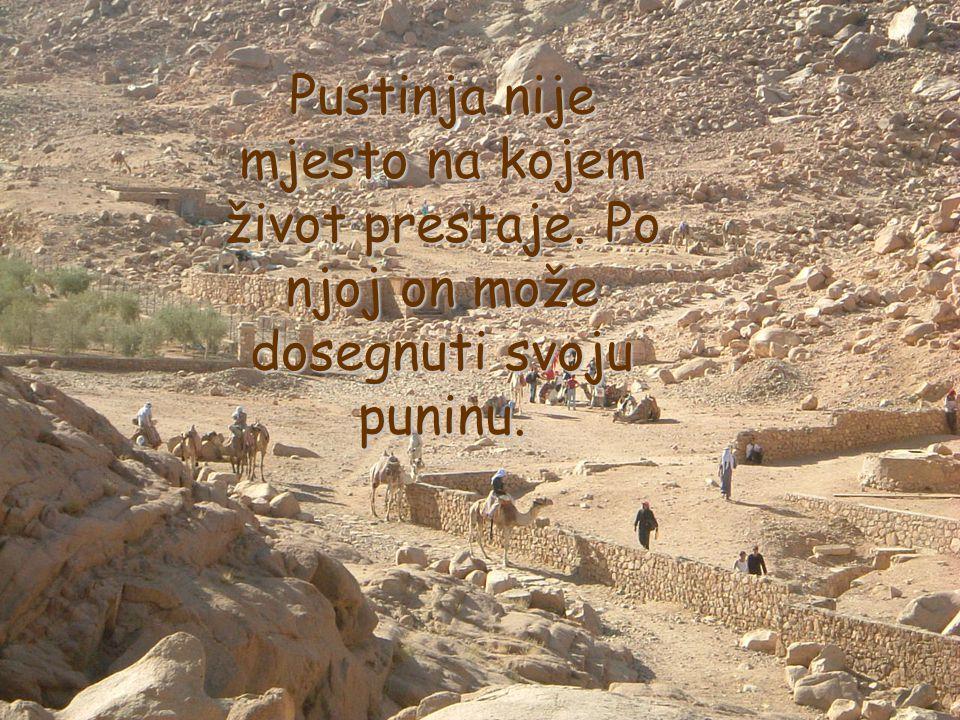 Pustinja nije mjesto na kojem život prestaje. Po njoj on može dosegnuti svoju puninu.