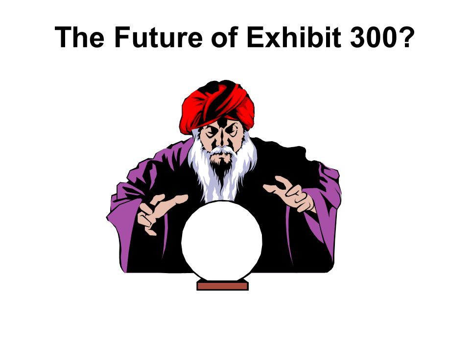 The Future of Exhibit 300