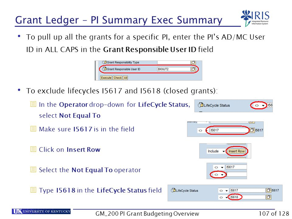 Grant Ledger – PI Summary Exec Summary Log onto BW Web Reporting Access FI Ledger Sheets  Grants Management  Grant Ledger – PI Summary Exec Summary Enter the required variables Some variables have defaulted values   Reminder: The University accounting uses the Fiscal year instead of the calendar year.