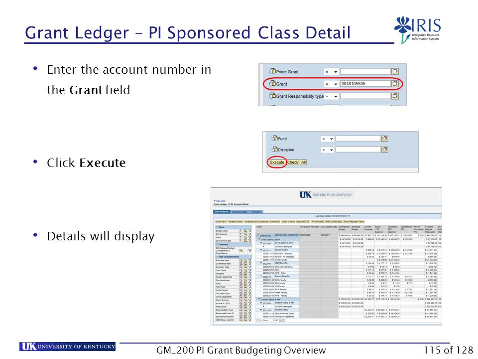 Grant Ledger – PI Sponsored Class Detail Log onto BW Web Reporting Access FI Ledger Sheets  Grants Management  Grant Ledger – PI Sponsored Class Detail Enter the required variables  Reminder: University accounting uses the fiscal year instead of calendar year.