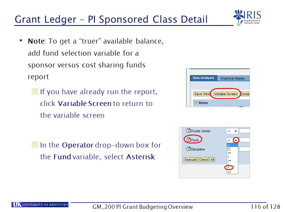 Grant Ledger – PI Sponsored Class Detail Enter the account number in the Grant field Click Execute Details will display GM_200 PI Grant Budgeting Overview115 of 128