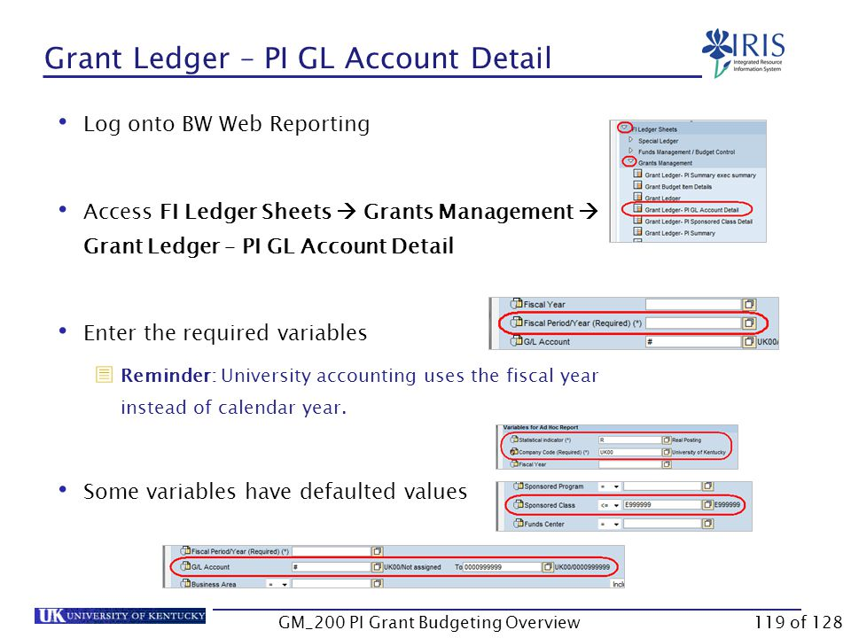 Grant Ledger – PI GL Account Detail This report displays the details for each G/L account.