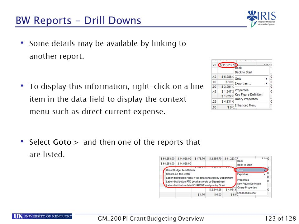 BW Reports – Drill Downs You can drill down in most BW reports to display more information such as sponsored class detail, G/L account detail, and vendor/payroll information.