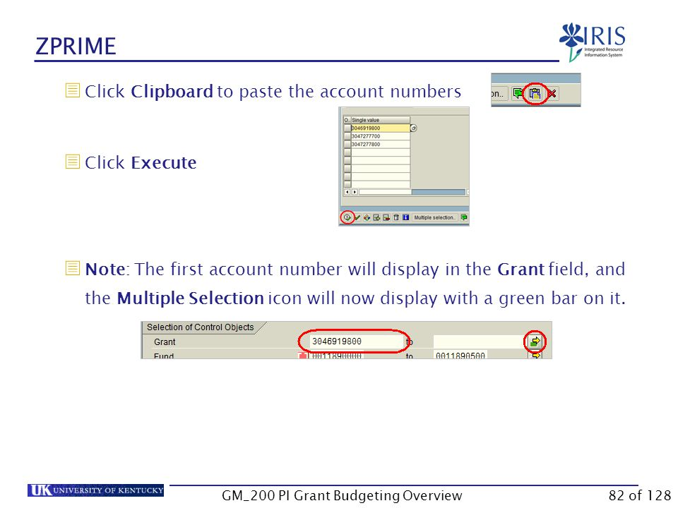 ZPRIME  Hold down Ctrl and tap C (this step will copy the account numbers to the clipboard)  Go to the transaction  Note: GMAVCOVRW is used in this example.