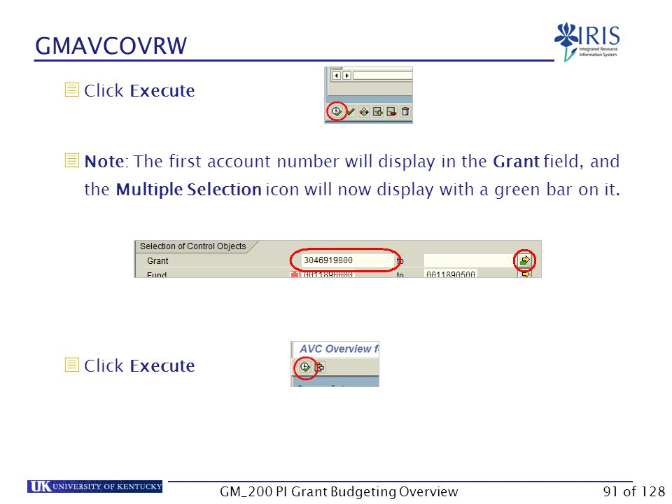 GMAVCOVRW  Hold down Ctrl and tap C  Go to the GMAVCOVRW transaction  Select the UKDefault variant  In the Grant field, click on Multiple Selection  Click Clipboard to paste the account numbers GM_200 PI Grant Budgeting Overview90 of 128