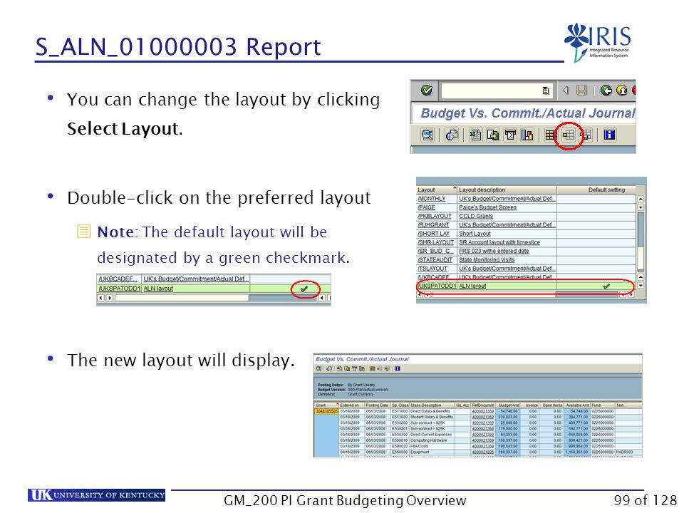 S_ALN_01000003 Report Click Execute By Grant displays a grand total for the grant GM_200 PI Grant Budgeting Overview98 of 128