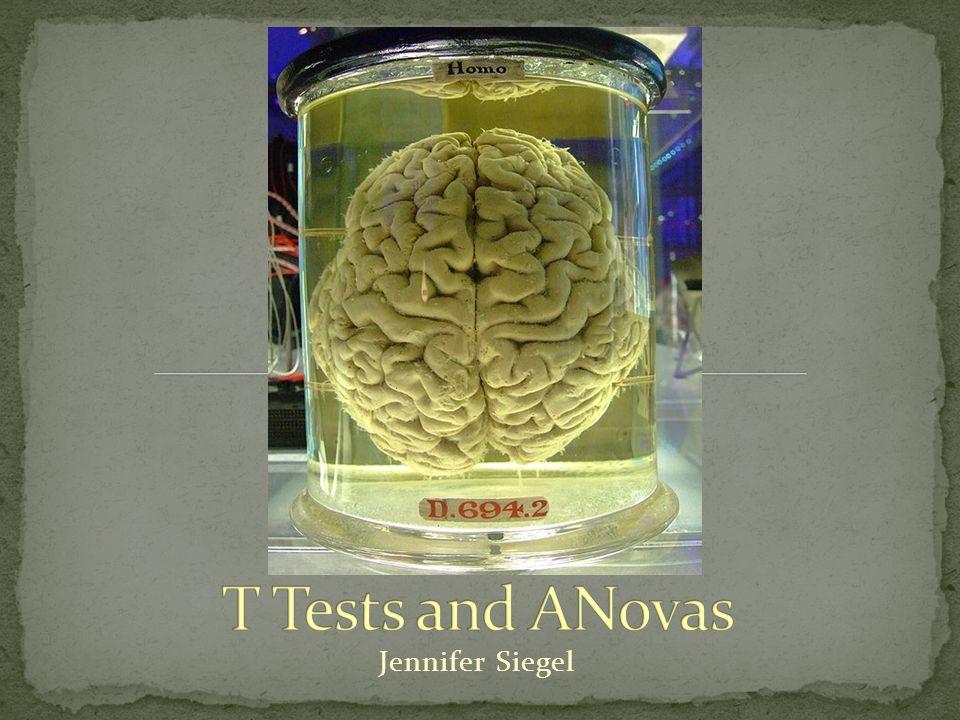 Statistical background Z-Test T-Test Anovas
