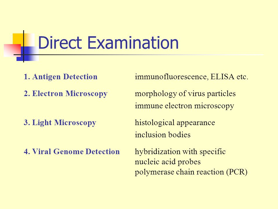 Direct Examination 1. Antigen Detection immunofluorescence, ELISA etc. 2. Electron Microscopy morphology of virus particles immune electron microscopy