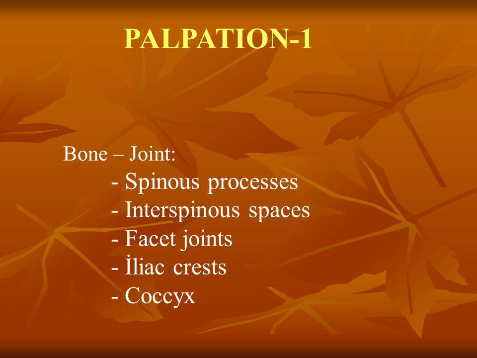 PALPATION-1 Bone – Joint: - Spinous processes - Interspinous spaces - Facet joints - İliac crests - Coccyx