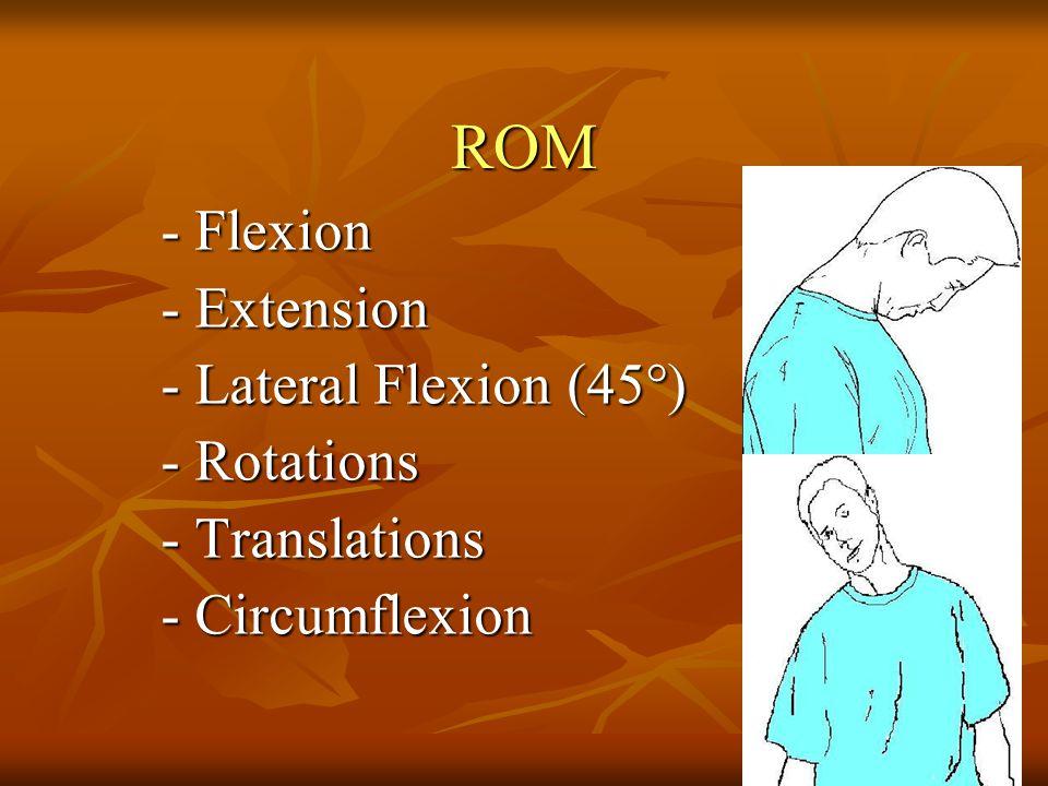 ROM - Flexion - Flexion - Extension - Extension - Lateral Flexion (45°) - Lateral Flexion (45°) - Rotations - Rotations - Translations - Circumflexion