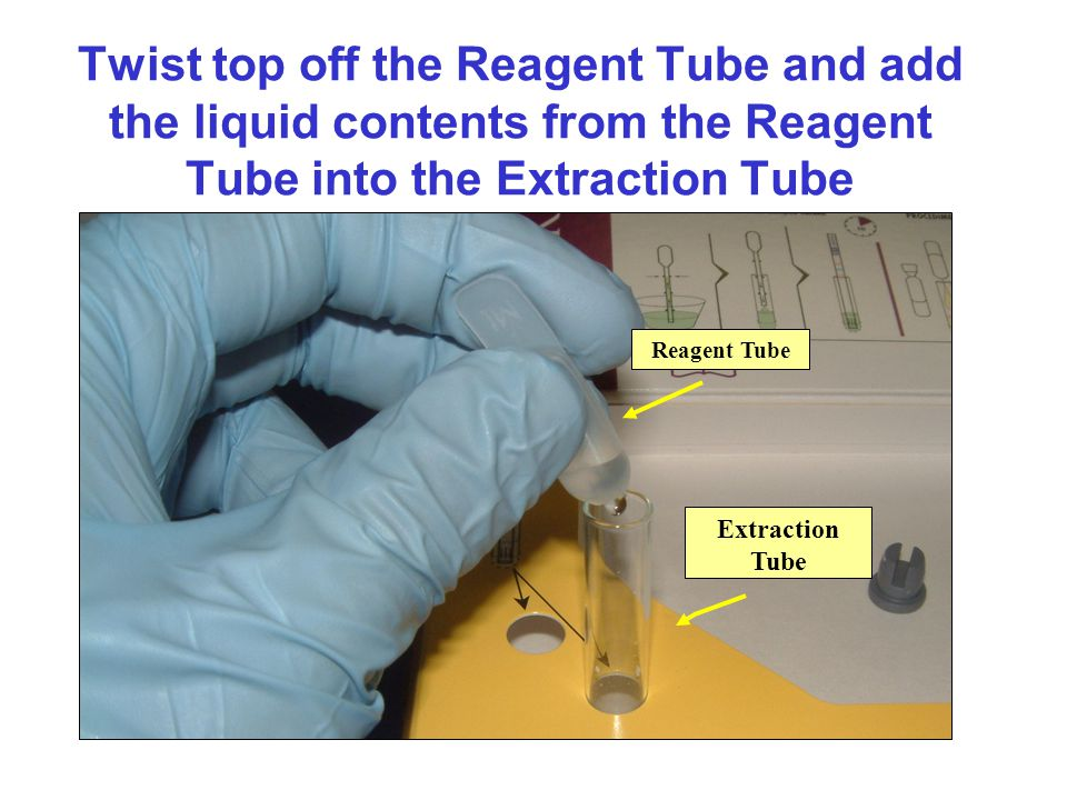 Twist top off the Reagent Tube and add the liquid contents from the Reagent Tube into the Extraction Tube Reagent Tube Extraction Tube