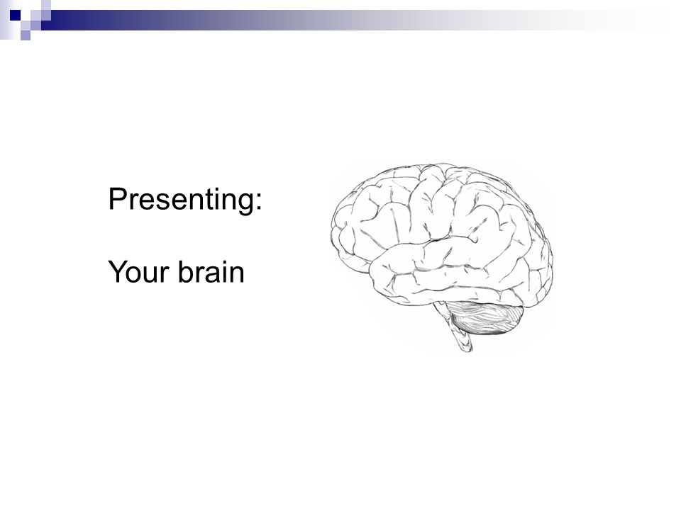 Presenting: Your brain