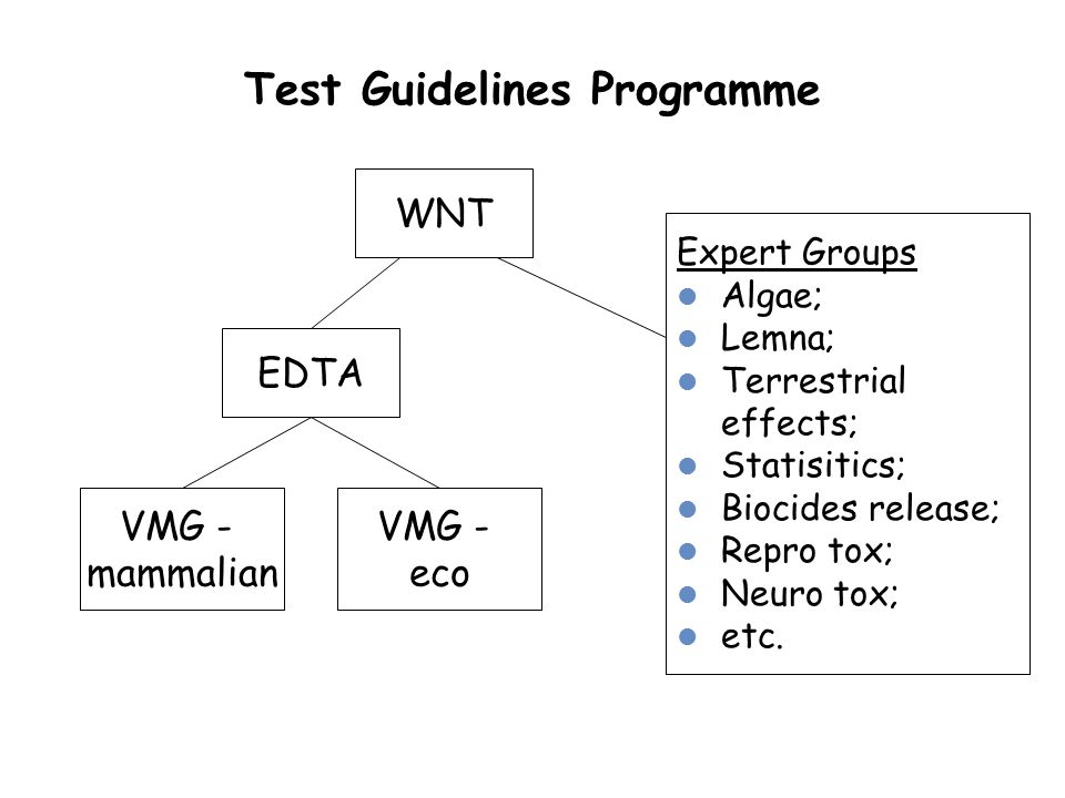 Test Guidelines Programme EDTA VMG - mammalian VMG - eco Expert Groups Algae; Lemna; Terrestrial effects; Statisitics; Biocides release; Repro tox; Ne