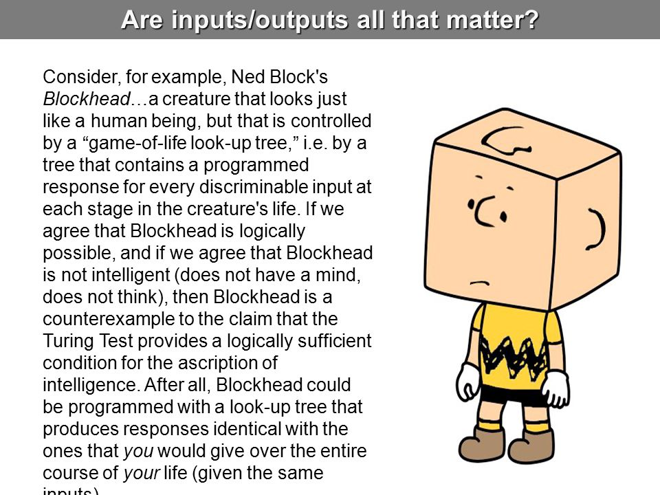 Are inputs/outputs all that matter? Consider, for example, Ned Block's Blockhead…a creature that looks just like a human being, but that is controlled