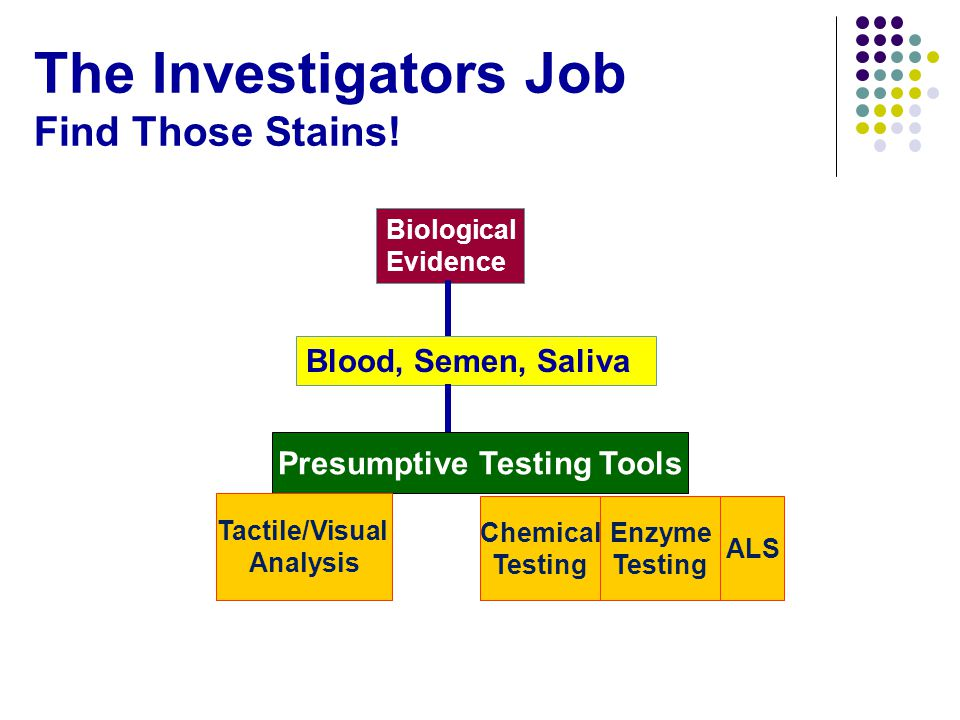 The Investigators Job Find Those Stains.
