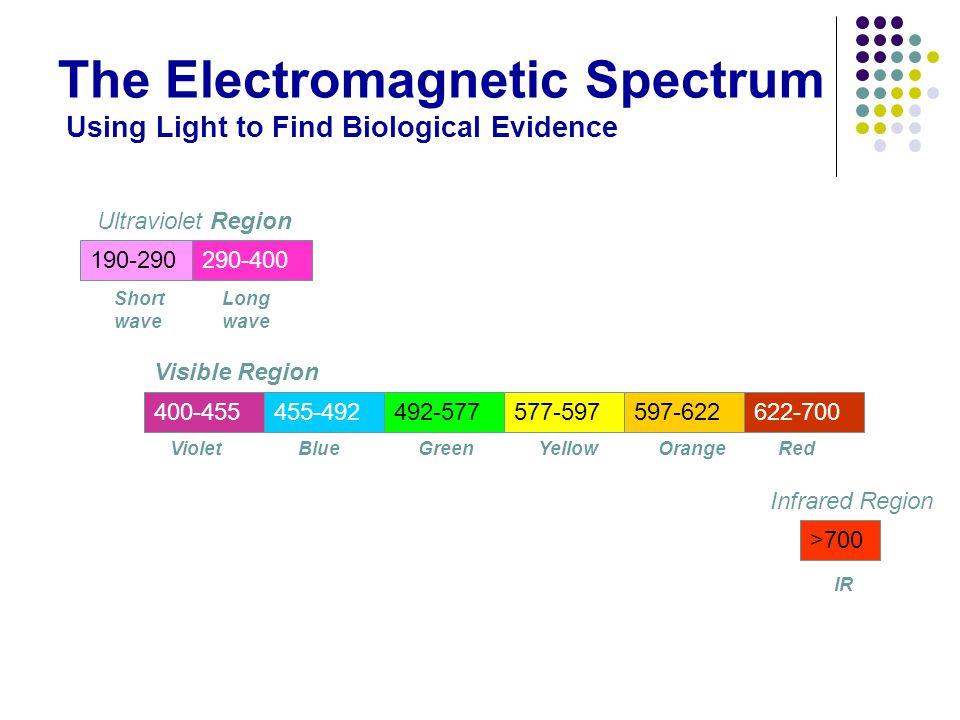 The Electromagnetic Spectrum Using Light to Find Biological Evidence 190-290290-400 Ultraviolet Region Short wave Long wave Visible Region 400-455455-492 >700 492-577577-597597-622622-700 Infrared Region VioletBlueGreenYellowOrangeRed IR