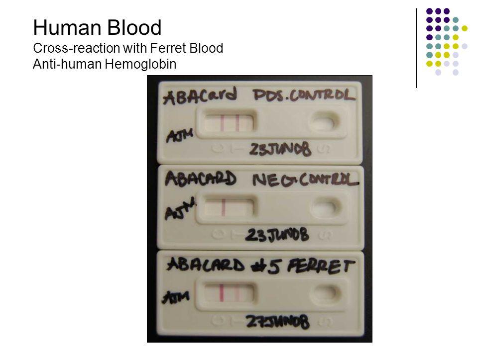 Human Blood Cross-reaction with Ferret Blood Anti-human Hemoglobin